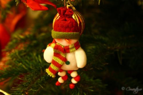26_decembrie_2011