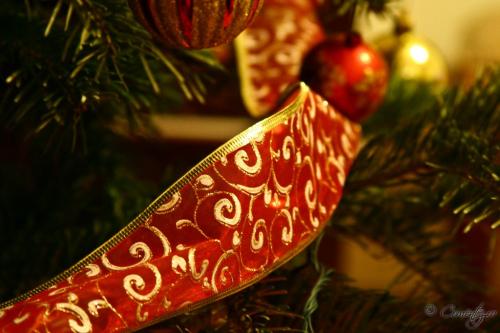27_decembrie_2011