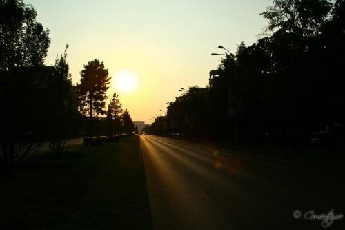 06_noiembrie_2011