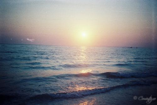 11_iulie_2011
