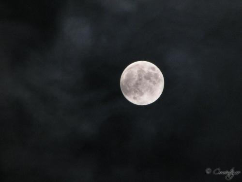 28_februarie_2012